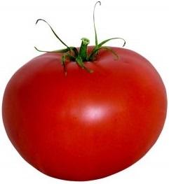 zongedroogde tomaten maken 2